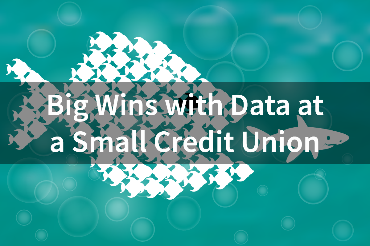 Big Wins with Data at a Small Credit Union