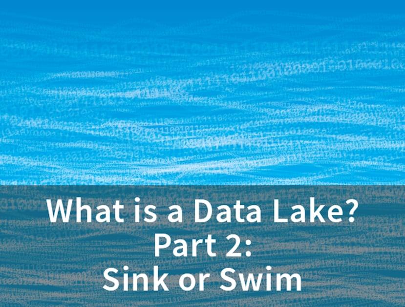 Data-Lake-2-sink-or-swim-1.png