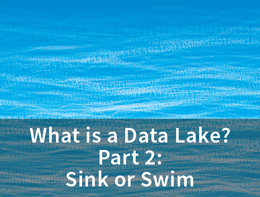 Data-Lake-2-sink-or-swim-1.png